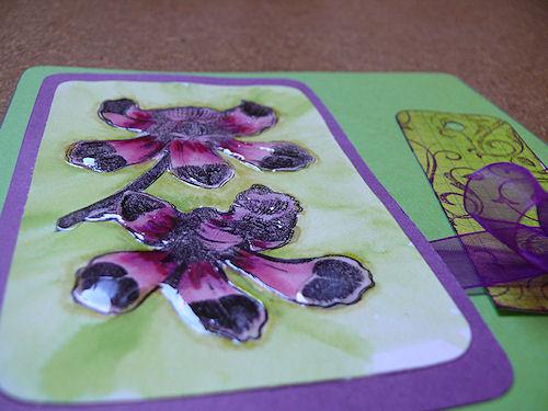 http://scrap.en.folie.free.fr/apourblog/cartecompagnie/carteautre/carteorchidee/Image2.jpg