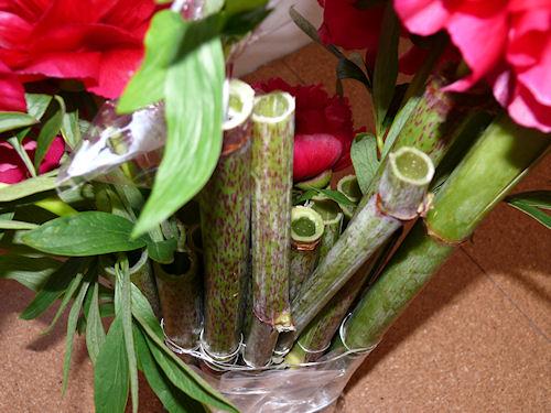 http://scrap.en.folie.free.fr/apourblog/cotejardin/presentations/1erjuin2010d.jpg