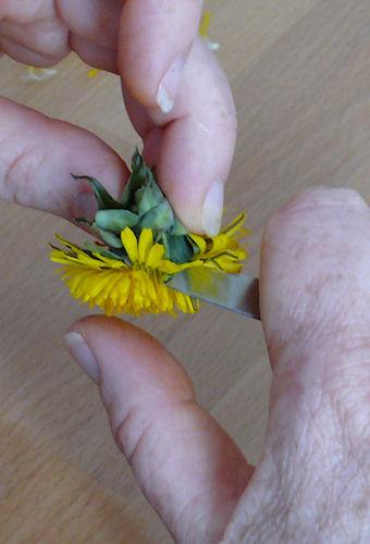 http://scrap.en.folie.free.fr/apourblog/recettes/confiture/cramaillotte/Image45.jpg