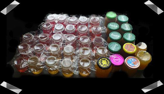 http://scrap.en.folie.free.fr/apourblog/recettes/confiture/mai2013/extracteur.jpg