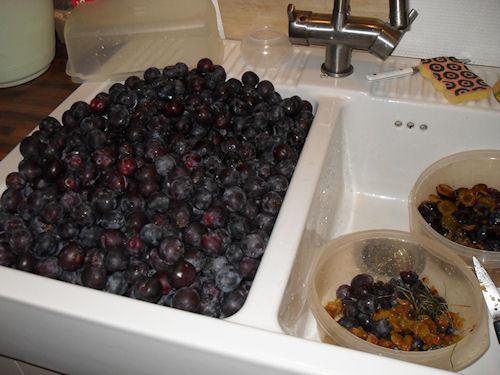 http://scrap.en.folie.free.fr/apourblog/recettes/prune/pruneevier08_10.jpg